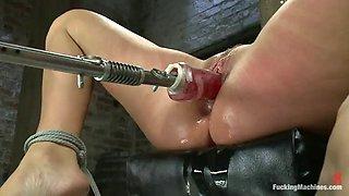 fucning machines fun with the sexy ashli ames