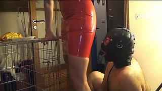 Dog training with Mistress Antonella