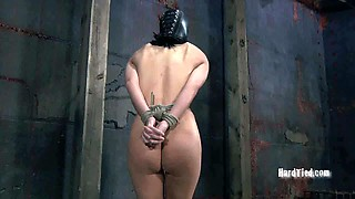 Tied up chick in mask is ready for punishment